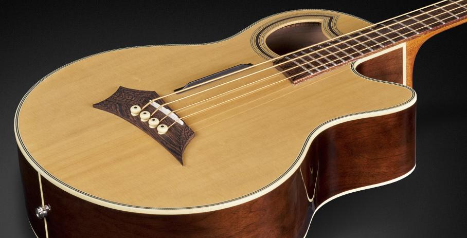 en/Warwick---Products--Acoustic-Bass-Guitars--Alien-Acoustic